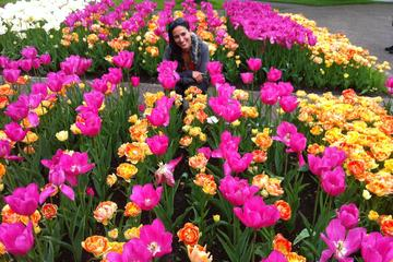 Skip-the-Line: Keukenhof Gardens and Haarlem Tour