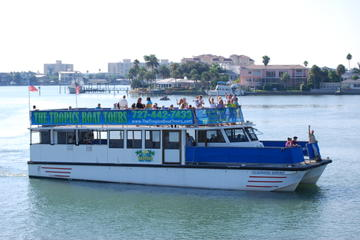 Clearwater Dolphin Watching Tour