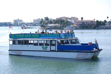 Excursão para Observação de Golfinho em Clearwater