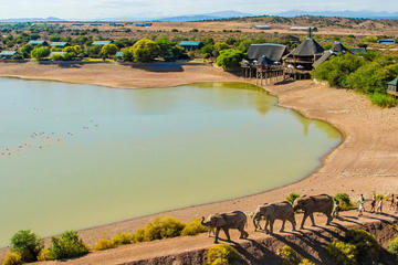 2-Day Glamping and Wildlife Safari in...