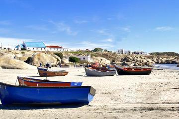 2-tägige Führung des Hochlands an der Westküste von Kapstadt