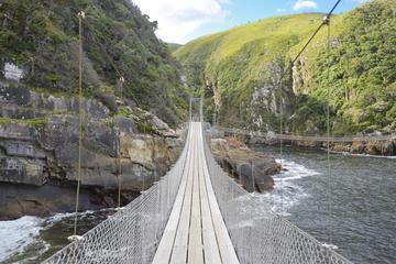 Excursão Privada de 4 dias pela Rota Jardim saindo da Cidade do Cabo