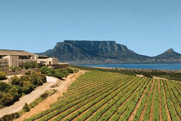 Private Tour: Durbanville Wine Valley Tasting Tour from Stellenbosch