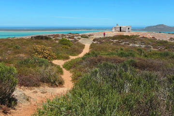 Private:  West Coast Wonder Guided Tour from Cape Town