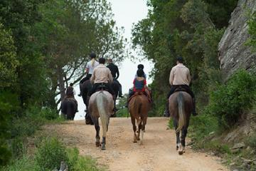 Horse Riding Small Group from ...