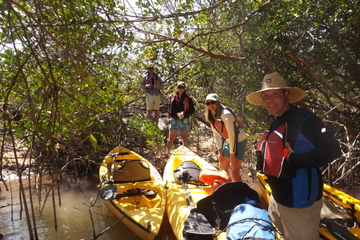 Excursão de caiaque na Marco Island com parada opcional na praia