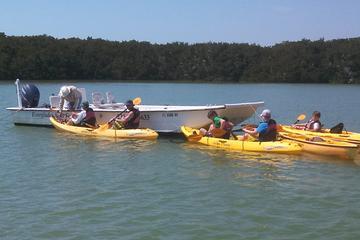 Ruta ecoturística en kayak con ayuda...