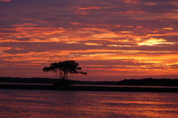 Tour in kayak di Marco Island al tramonto o al chiaro di luna