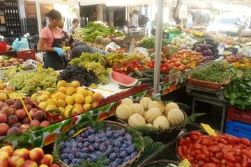 Matrundtur till fots i Rom i liten grupp: Trastevere, Campo de' Fiori ...