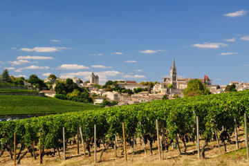 Bordeaux Super Saver: Full-Day Wine Tour and Lunch