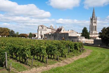 Bordeaux Super Saver: Wine Tasting, Lunch and Tour