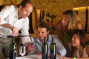 Excursão privada: Degustação de Vinho des Châteaux na Rota de...