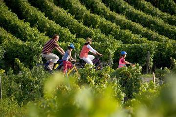 Saint-Émilion-fietstour met een kleine groep vanuit Bordeaux ...