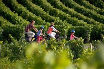 St. Emilion Fahrradtour in kleiner Gruppe von Bordeaux aus mit...