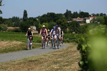 Visite en vélo de Saint-Émilion au...