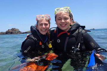 Scuba Diving Experience in Lanzarote