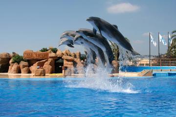 Marineland-Delfinshow und Eintrittskarte zum Aquapark mit Nutzung der...