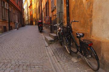 Excursão particular: excursão de bicicleta a Estocolmo, incluindo as...