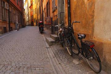 Excursión privada: excursión en bicicleta por Estocolmo que incluye...