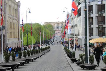 Private Oslo City Walk