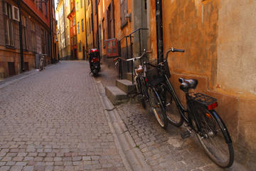 Private Tour: Stockholm Bike Tour Including Kungsholmen, Långholmen...