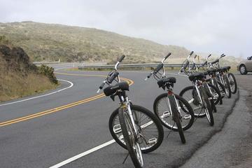 マウイでのハレアカラの自転車とジップラインの冒…