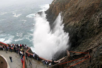 Ensenada Shore Excursion: Blow Hole and La Bufadora Tour with Horseback Riding
