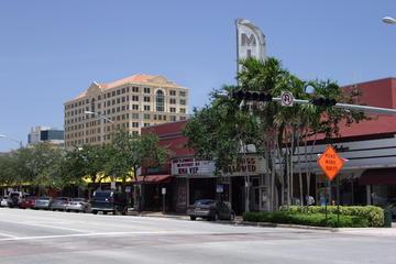Port Everglades Shore Excursion: Private Transfer and Private Miami...
