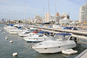 Visita turística a la ciudad de Punta del Este