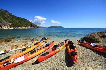 Kayak por el mar en la isla Fitzroy