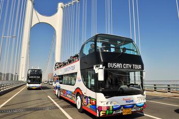 Busan City Tour Bus - Loop Tours