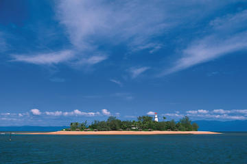 Afternoon Low Isles Snorkeling and Sailing Cruise from Port Douglas