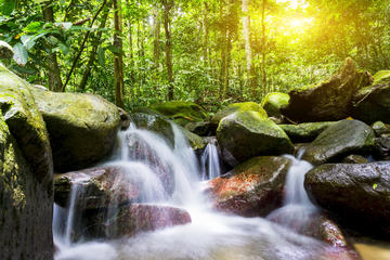 Waterfall Trail - Templer Park or Kanching Falls ( Seven Level Waterfall )