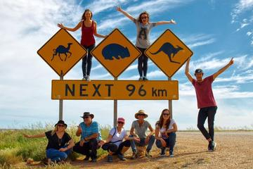 9-Day Perth to Adelaide Nullarbor Camping Adventure with Optional...