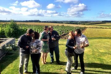 Small Group Tour: Wine Tour from...