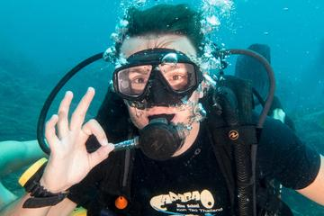 Try Scuba Diving in Koh Tao with...