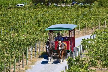 Day Trip Half-Day Horse-Drawn Trolley Shuttle to Temecula Wineries near Temecula, California