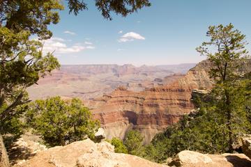 Excursion d'une journée sur le plateau sud du Grand Canyon au départ...