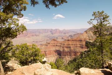 Gita di un giorno al South Rim del Grand Canyon da Las Vegas con tour