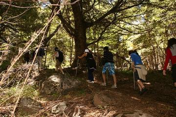 Excursión de trekking en el Cerro Colorado desde San Martín de los...