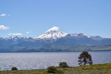 Excursión de un día del lago Huechulafquen y el volcán Lanín