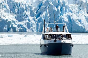 Glaciers Cruise with Gourmet Lunch...
