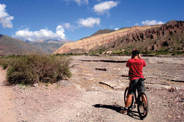 Half-Day Mountain Bike Tour to Juella from Tilcara
