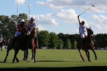 Half-Day Polo Experience in Buenos Aires