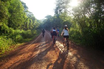 Bike Tour to Yaguarundi Road from Puerto Iguazú