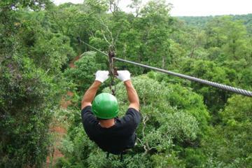 Iguazu Forest Eco-Adventure: Trekking, Ziplining and Rappelling
