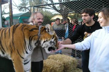 Luján Zoo ab Buenos Aires einschließlich Tigerstreichelzoo