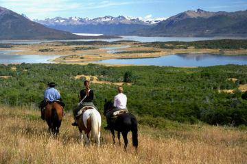 Nibepo Aike Ranch with Horseback Riding from el Calafate