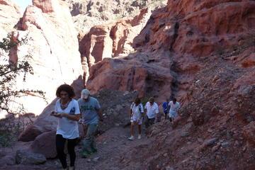 Quebrada De Las Conchas Hiking from