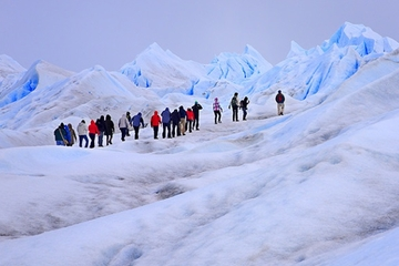 Tagesausflug mit Gletscherwanderung zum Perito Moreno-Gletscher ab El...